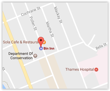 Bin Inn Thames